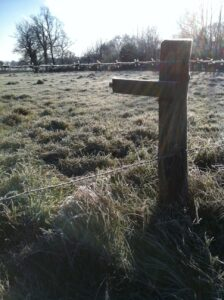 Fencepost and frosted fields