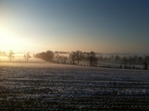 foggy fields on a snowy morning
