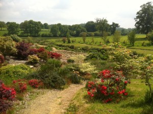 Gardens and fields