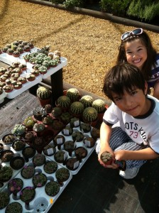 Kids and cacti
