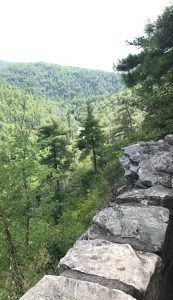 Lookout near Linville Falls