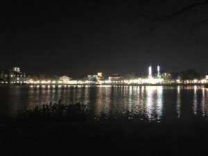 Celebration, Florida lake at night